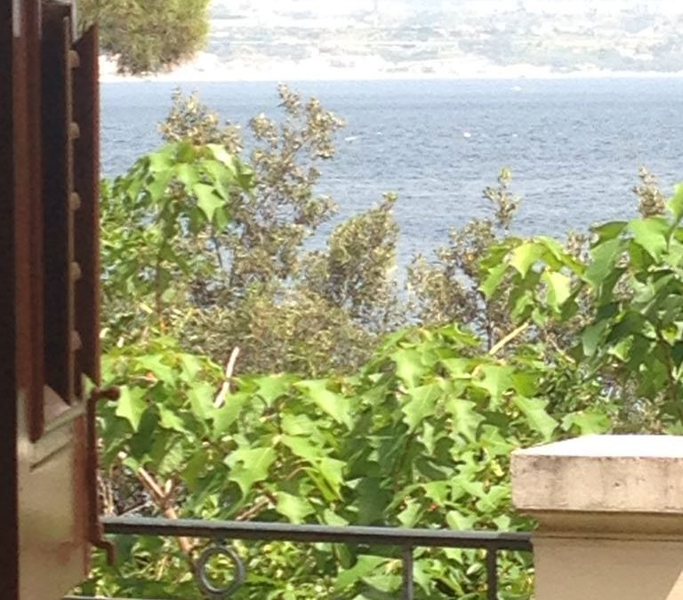 Summer school SIPED a Villa Amalia